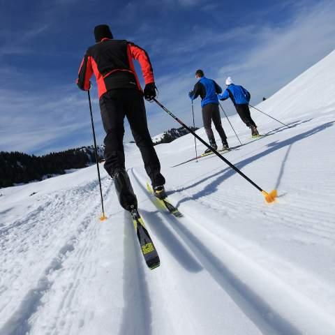 Ski de fond, vue de dos