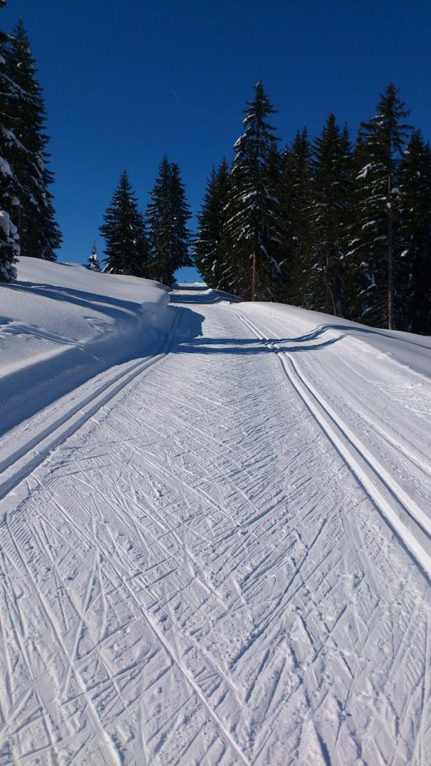 Piste bleue de ski de fond du Nant à Beauregard