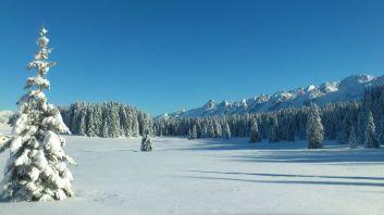 Boucle verte de ski de fond des crulets