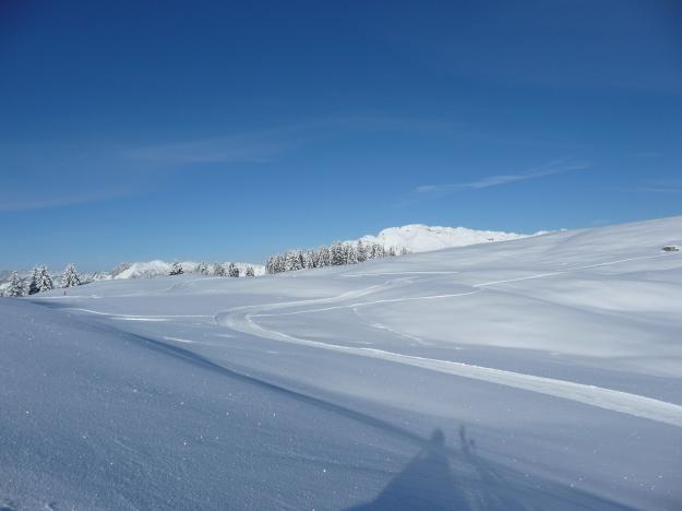 Piste de ski de fonds de l'espace nordique de Beauregard