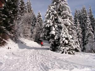 Il a neigé sur le domaine de ski de fond de Beauregard.