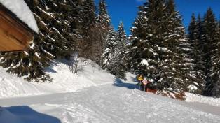 Le soleil revient sur les pistes de ski de fond.