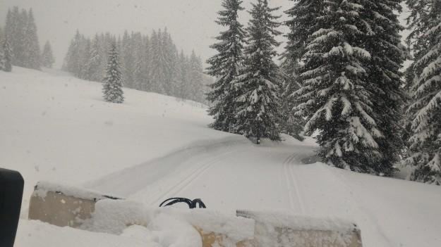 Piste de ski de fond, retour du nant.