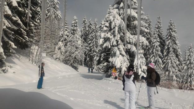 Départ du ski de fond sous le soleil.