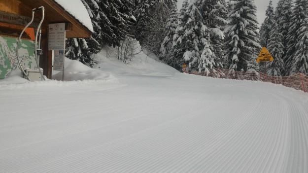 Une piste de ski de fond damée de frais.