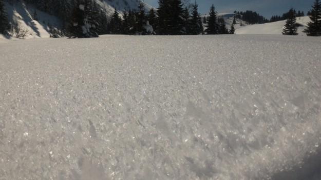 Neige sur le domaine de Beauregard