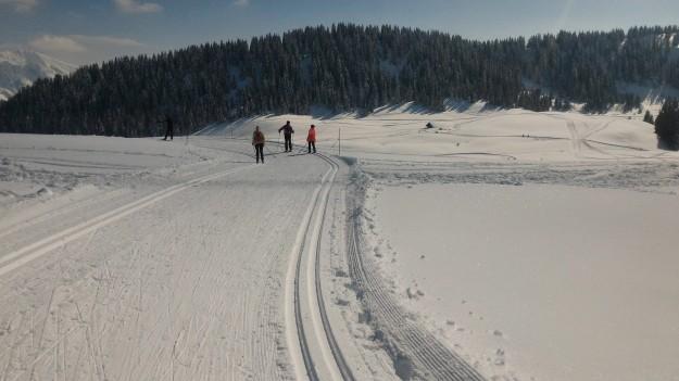 Skieurs sur les pistes de fond de Beauregard.