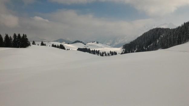 Vue du domaine de ski de fond de Beauregard de la piste noire sous Colomban.