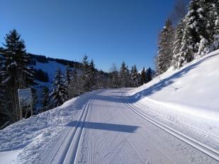 Piste se ski de fond le matin, -15°C