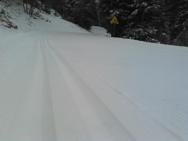 Trace de ski de fond