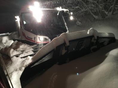 dameuse sous la neige.