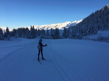 Le froid tombe sur le domaine de ski de fond il est temps de rentrer