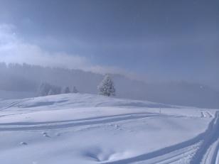 ambiance hivernale sur le domaine de ski de fond