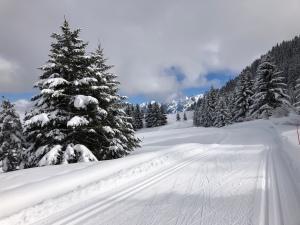 Ski de fond de Beauregard